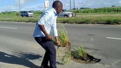 Photo of Residents fill potholes with plants