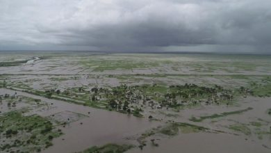 Photo of Cyclone Idai: Doctors call for more support