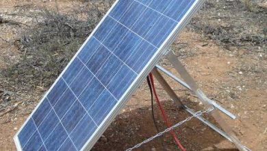 Photo of Solar power is the way to go: ZERA