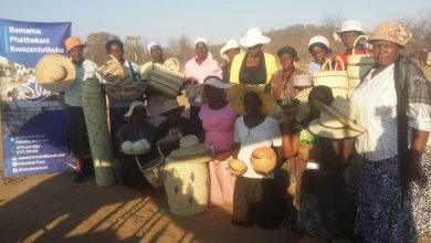Photo of Nkayi basket weavers search for markets
