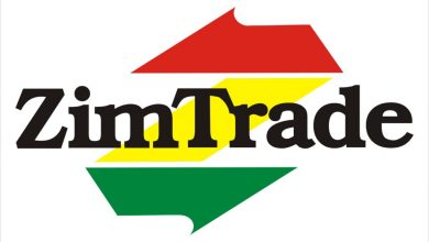 Photo of ZimTrade promoting services exports