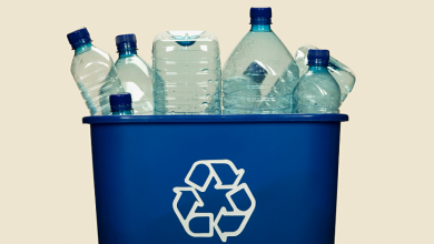 Photo of Container Deposit Refund Scheme – the answer to solid waste pollution