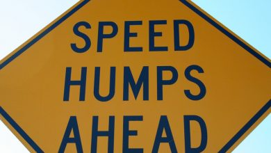 Photo of Huge speed humps bother City Fathers