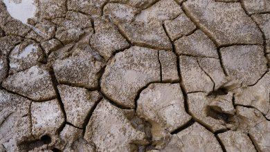 Photo of Parts of Zimbabwe, SADC receive worst rainfall since 1981