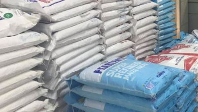 Photo of Govt adopts door-to-door mealie-meal delivery strategy