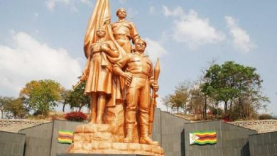 Photo of Zim in unique Heroes Day commemorations
