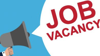 Photo of Job Vacancy: Program Assistant