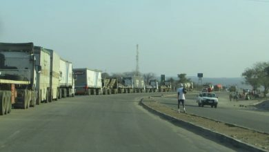 Photo of Trucks pile up at Beitbridge border as SA customs officers on go slow