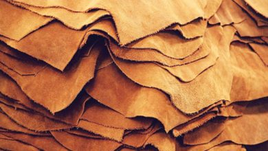 Photo of Leather sector poised for growth
